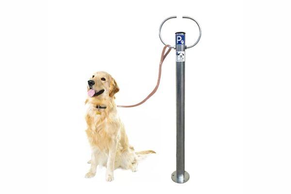 Σύστημα δεσίματος σκύλων PARKING-DOG